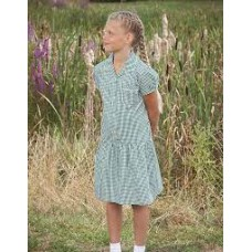 Green Ashley Corded Gingham Dress - Reduced to Clear